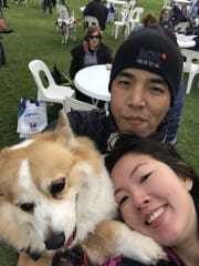 Paw-Friendly family in Currambine
