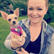 Loving pet sitter in Richmond