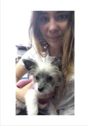 Friendly Pet-Loving Helper from Greenwich