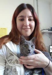 Vet nurse cat sitter. I'll love them like my own