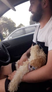 Point Cook Experienced Pet Sitter