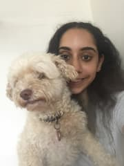 Experienced Family with Pets - Hills District