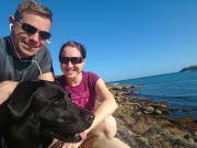 Dog Lovers in Maroubra - Work from home