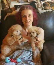 Safe Pet Sitting & Professional Grooming -Nunawading - Covid Safe