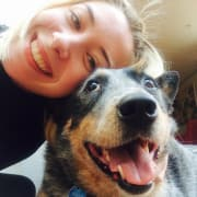 Passionate Inner West dog-lover experienced with elderly, large and anxious dogs!