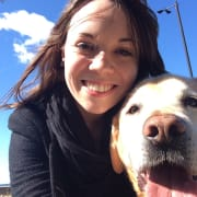 Experienced dog sitter in Glebe
