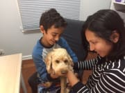 Caring, fun sitter who has 2 years of Oodle experience!