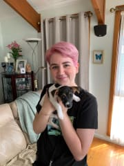 Trusted dog walker and pet sitter (home visits)