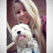 Loving dog walker in Para Hills