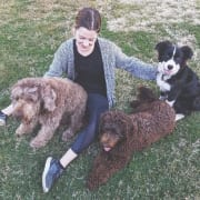 Caring dog walker and pet sitter in Eastern Suburbs