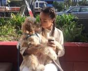 Active Pet Lover In St Kilda east