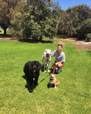 Trusted and Reliable Pet Care in St.Kilda ?