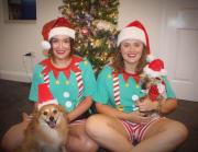 Reliable, fun & loving pet sitters