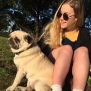 West Melbourne Animal Lover
