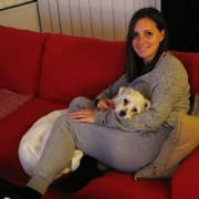 PAWsome, experienced, fun pet sitter and Tommy, the cheeky dog