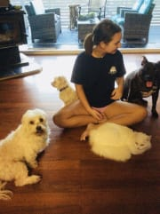 Loving Pet Sitter on the Gold Coast!