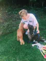 Friendly & experienced pet-sitter in the Lane Cove area!