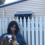 Animal loving student based in Carlton, experienced and responsible with all pets