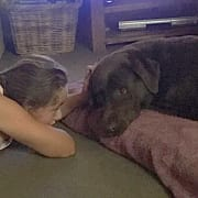 DOG LOVING FAMILY IN BOTANY