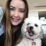 Experienced, reliable and loving pet sitter/walker from Subiaco! Have car, can travel