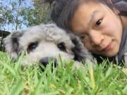 Loving pet in Belgrave 10 acres of fun