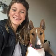 'Amy Walks Dogs' - Experienced, intuitive pet sitter/walker providing personalised service based in Fitzroy North. (CBD & beyond)