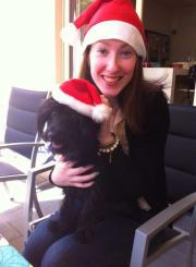 Loving owner of an energetic pet Moodle called Alfie in Hawthorn East