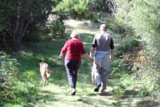 A mature couple with one dog - and we are used to having more. We and our pup are used to having the company of a cheeky, mischevious other dog - who sadly is no longer with us and has left a big hole in our hearts. We would love to care for your dog as w