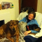 Loving pet family in Queanbeyan