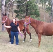 Animal lover in the mid north coast area