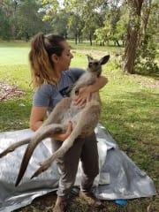 Alexandria kangaroo researcher and animal lover!