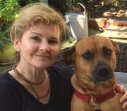 Experienced pet walker/sitter in Bayswater, WA