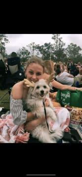 Animal adoring pet sitter in Gold Coast region