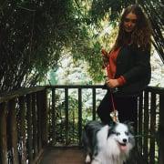 Experienced Dog loving Katie