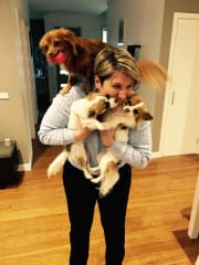 dog lover and certified dog behaviouralist and trainer in Umina Beach