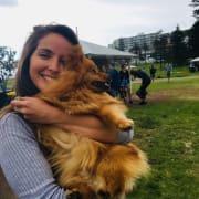 Pet Lover Trustworthy and Flexible Petsitter