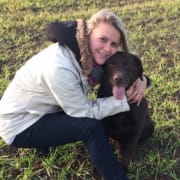Experienced and Caring Pet Sitter - dog walking available