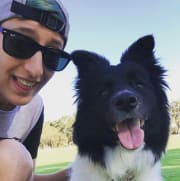 Great dog walks and pet care in South Perth