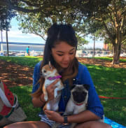 Animal lover and pet sitter/walker based in Darlinghurst/Rushcutters Bay