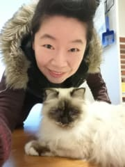 Cat Boarding Fulltime airport 猫住宿