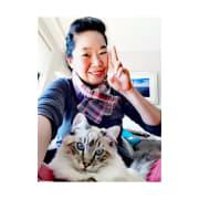 Cats Hosting & Walking & Visiting