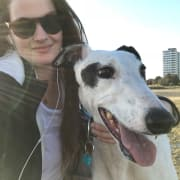 Bridie and Greyhound Luna in Ashwood! Holidays for hounds!