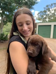 Reliable, professional and animal lover in Townsville!