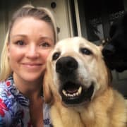 Friendly, reliable & caring dog walker/sitter in Malvern East