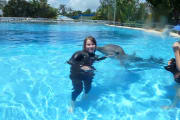 Reliable, flexible and caring pet sitter, I love all animals