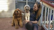 Flexible and reliable pet sitter
