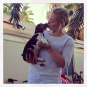 Loving pet sitter / walker