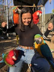 Animal mad, fun loving, energetic, petsitter!! Live in Caloundra QLD