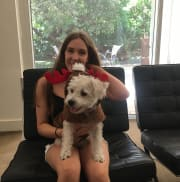 Organised and empathetic pet sitter