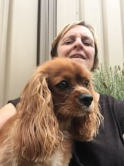 Caring,reliable,trustworthy and mature pet sitter in your home